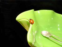 Lady Bug On Bowl