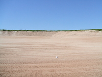 Golf and Sand