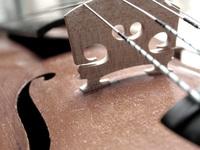 violine_detail