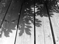 Shadows on the deck