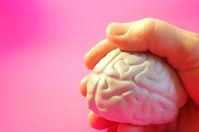 Mozog  v ruke - umelý model mozgu v dlani