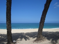 Hawaiian Scenes 6