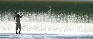 Fly Fishing at the Falls