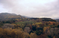 Kavkaz 36