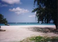 Browne Beach