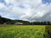 Hokkaido 32