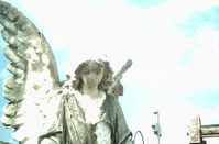angel00 3