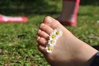 Daisy feet 1