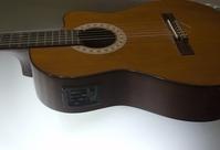 Classic Guitar 1