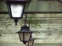 light bulb 04