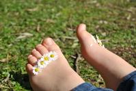 Daisy feet 2