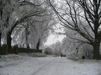 winter in Neugarten 2