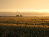 sunset landscape 4