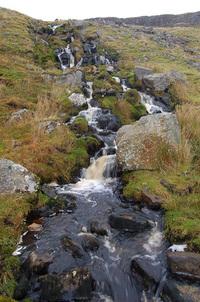 Pennine stream