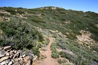 Cedar Springs Trail