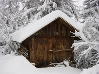 wooden barrack