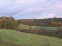 autumn evening 13