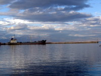 Harbor Calm