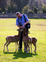photogrphers and animals 1