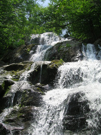 Dark Hollow Falls 1