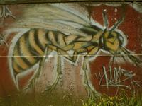Graffitis Chilenos 5