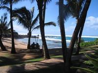 Maui Love Scenery
