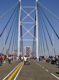Nelson Mandela Bridge 1