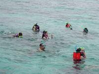 Snorkel, Phuket
