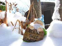 Winter Gnome 2