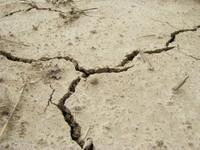 Dirt Crevice 2