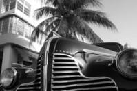 Miami Eight