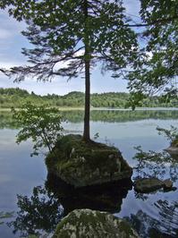 Lake in Jura, France