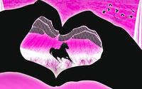 The Animal Love