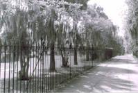 Colonial Park
