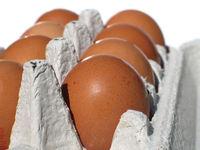eggs carton 3