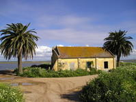 Tagus Estuary 1