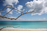 Sint Maarten Branch