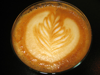 cappuccino flower