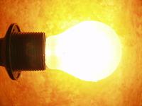 bulb against orange photo