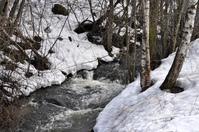 Nordic Spring Creek