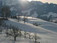 Winterlandscape 2