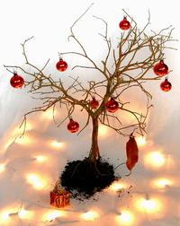xmas bonsai 2