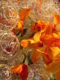 Flower Art 13