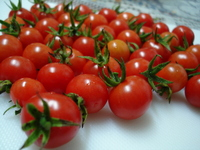 Tomate cereja 3