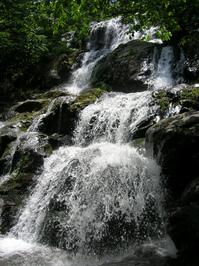 Dark Hollow Falls 2