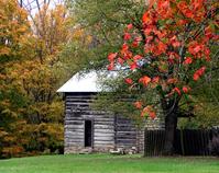 Autumn landscapes 1