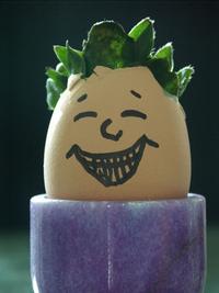 Mr. Egghead