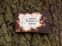 Night Priority Swim