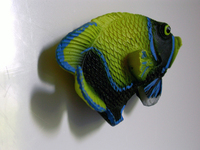Yellow Submarine (fish)