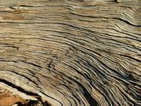 australian natural textures